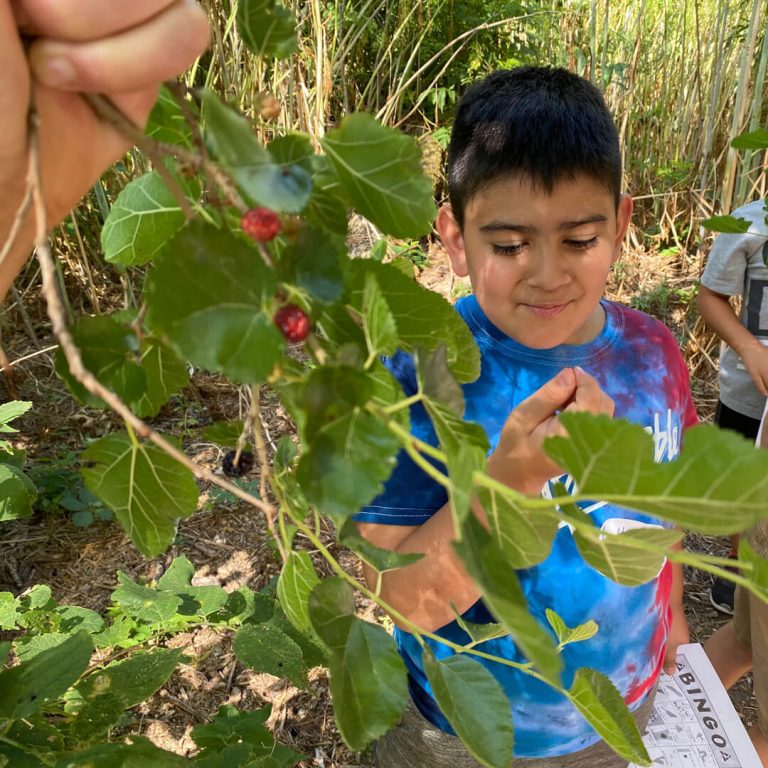 Young boy picks berries as part of Prarie Loft for Outdoor and Agricultural Living in Hastings, NE